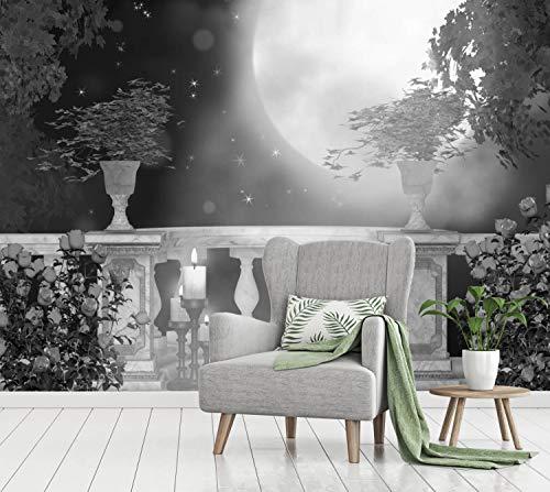 Vlies Tapete Poster Fototapete Balkon Romantik Mondschein Farbe schwarz weiß, Größe 100 x 80 cm