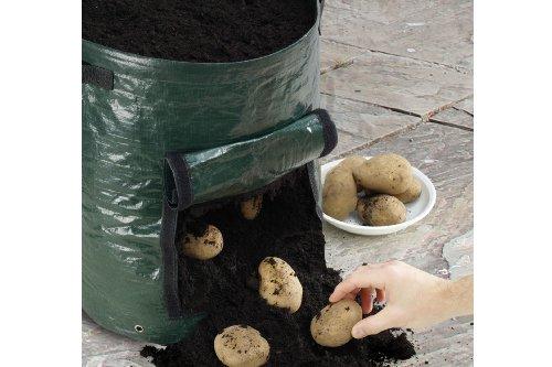 Greentree Lot de 2 sacs pour planter des pommes de terre avec fenêtre pour la récolte