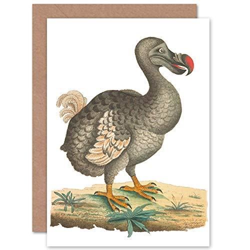 Fijne Kunst Prints Vogel Dodo Vintage Illustratie Wenskaart Met Envelop Binnen Premium Kwaliteit