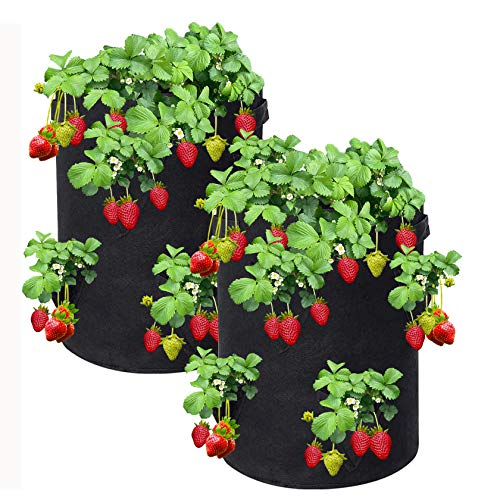 Reeyox Strawberry Grow Bag, 2 Pack 10 Gallon Strawberry Plant Bag with 8 Side Planting Pockets, Breathable Felt Material Plant Container with Handles for Balcony Courtyard Gardening (Black)