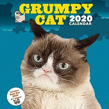 Best cat calendar 2020 wall Reviews