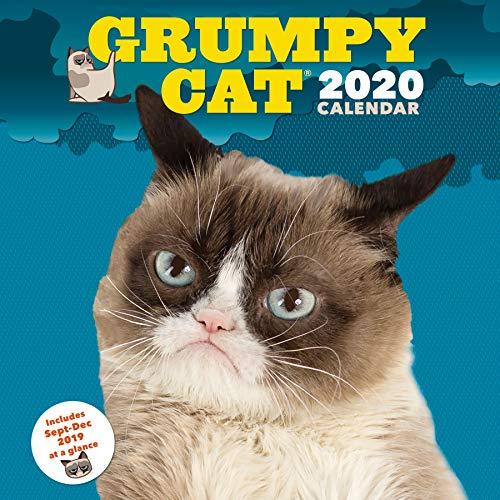 Grumpy Cat 2020 Wall Calendar: (Funny Gag Gift Yearly Calendar, Cat Lovers Present)