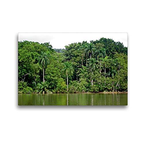 CALVENDO Premium Textil-Leinwand 45 x 30 cm Quer-Format Urwald am Ufer des Panama-Kanals, Leinwanddruck von Volker Geyer
