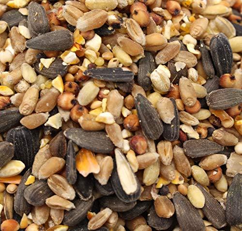 FutterXL 25kg Streufutter Mischfuttermittel für freilebende Vögel Winterstreufutter