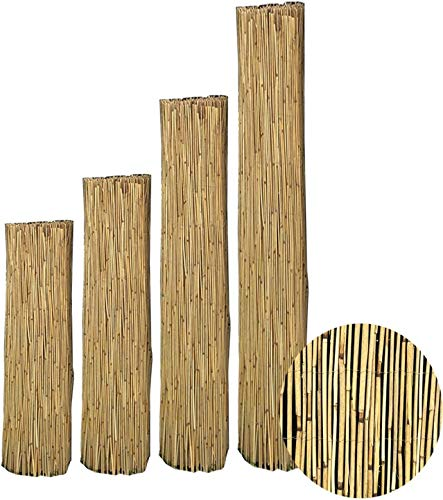 interGo Sichtschutzmatte, Schilfrohrmatte Premium 180x550cm (HxB), Sichtschutz aus dichtem Schilf, Schlfmatten für Balkon, offene Terrasse und Gartenzäunen