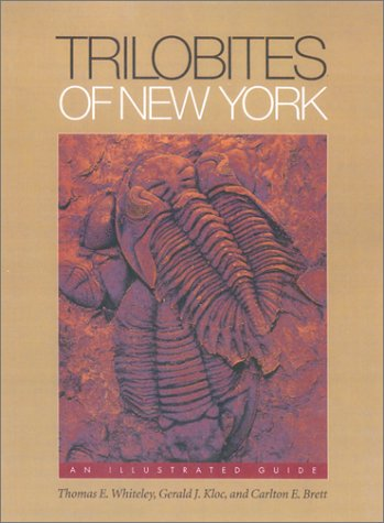 Trilobites Of New York: An Illustrated Guide (Comstock Books)