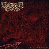Bastard Grave: Diorama of Human Suffering (Audio CD (Digipack))