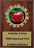 Express Medals 5x7 Teacher Apple Plaque Award Trophy with Engraved Plate Cherry Color FCL403
