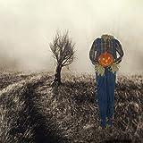 Haunted Hill Farm HHPUMP-5FLSA Life-Size Animatronic Scarecrow, Indoor/Outdoor Halloween Decoration, Color 6