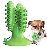 GingerUP Cepillo de Dientes en Perro Jugar - Dog Brushing Stick - Limpieza de higiene Dental - Juguete para Masticar (XL)