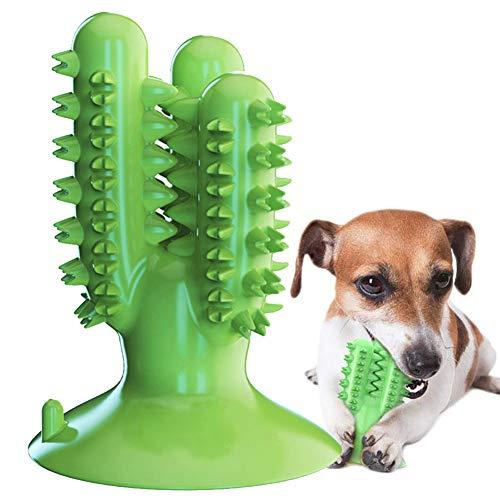 Hundezahnbürste Hundespielzeug Kauspielzeug Gummi Zahnreinigung Hunde Zahnbürste Stick Langlebig für Kleine Hunde Welpe Große Hunde, Hundezahnpflegespielzeug