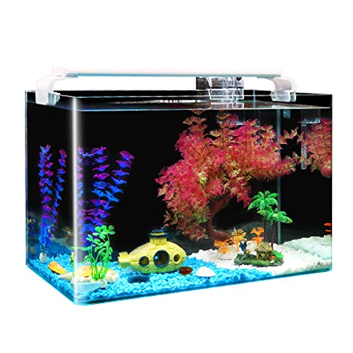 Fish Food Supplies | HD Hot Curved Fish Tank Rectangular Glass Landscaping Aquarium Kit Desktop Decoration to Send LED Lights 3 Sizes (Size : L), Gym exercise ab workouts - shap2.com