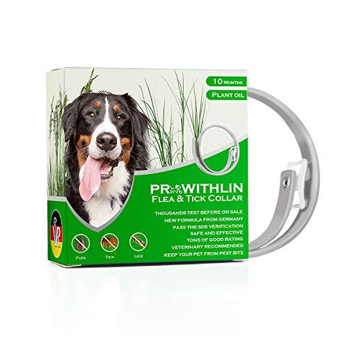 Collar Antipulgas para Perros, 10 Meses de Protección, Collar Antipulgas para Perros 62cm Natural para Animales Pequeños y Medianos