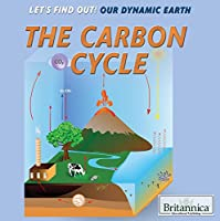 The Carbon Cycle (Let's Find Out!)