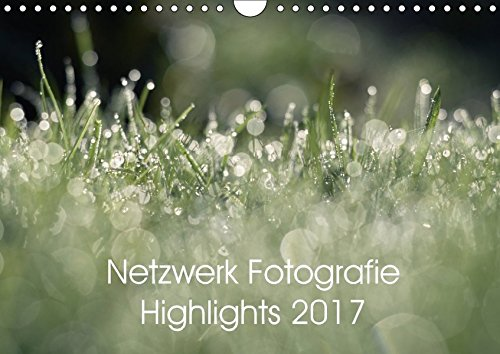 Netzwerk Fotografie Highlights 2017 (Wandkalender 2017 DIN A4 quer): Die besten Bilder des Jahres aus dem Netzwerk Fotografie (Monatskalender, 14 Seiten ) (CALVENDO Hobbys)