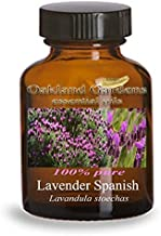 spanish lavender essential oil