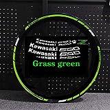Etiqueta engomada de la motocicleta para Z650 Motor reflectante Bike Rum Decal Decoración impermeable Personalizado Remonte interior Rayas (Color : Grass green with z)