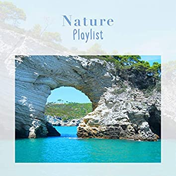 Background Natural Nature Playlist