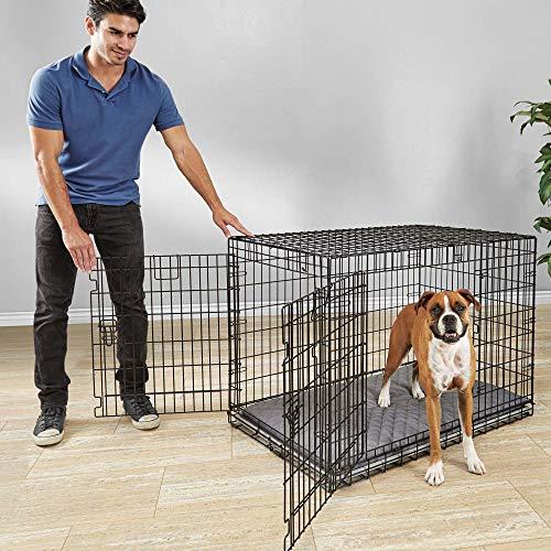 """You & Me Ultra Tough 2-Door Folding Dog Crate, 43"""" L x 29"""" W x 31"""" H, X-Large Basic Crates Dog Supplies Top"""