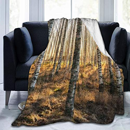 Super Soft Blanket Sleeps Comfortably, Used in Bedroom Sofa Chair Living Room (50x40cm) White Birch Trees