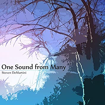 One Sound from Many