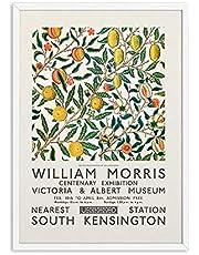 William Morris utställningsaffischer Vintage väggkonst Citrusväxtfrukt Kanvasmålning och tryck för vardagsrumsdekorationer 50x70cm X1 ingen ram