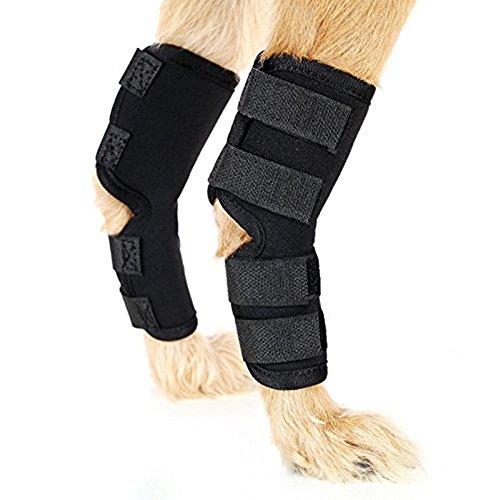 9-Jet Ecommence Hunde-Bandage für Hinterbeine, unterstützt Wundheilung und Verstauchungen durch Arthritis, mit 4 Sicherheits-Klettriemen, um Verletzungen und Verstauchungen zu verhindern (1 Paar)