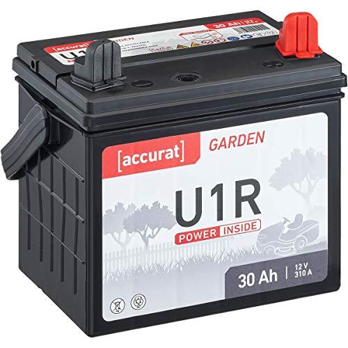 Accurat 30Ah 12V Rasentraktor-Starterbatterie Garden U1R (Pluspol rechts) Nass-Batterie für Aufsitzmäher wartungsfrei und geladen