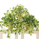 消臭 脱臭 空気清浄 光触媒観葉植物 フェイクグリーン おしゃれ インテリア「ポトス、アイビー、プミラ 3点セット(素焼きポット)」NO8407