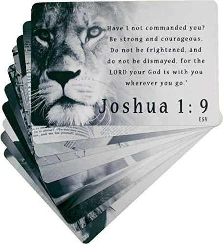 Men's Scripture Cards (10-Pack) ESV, Inspirational Memorization Bible Verse Cards of Encouragement