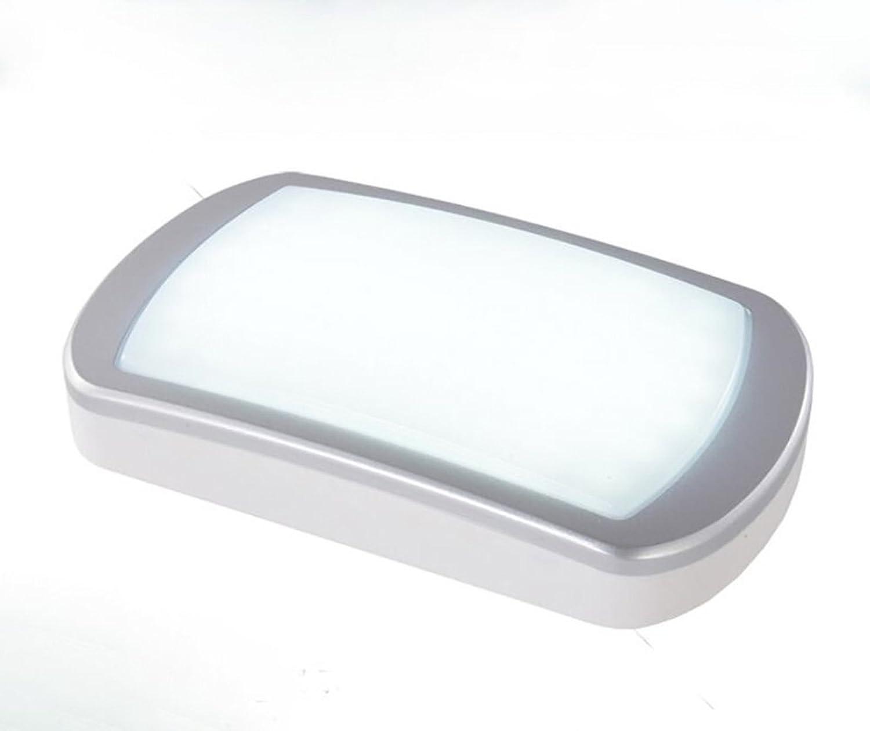 Wandleuchte Modern minimalistisch Schlafzimmer Nacht Balkon Gang Halterung Licht Acryl Material LED (Farbe   Silber)