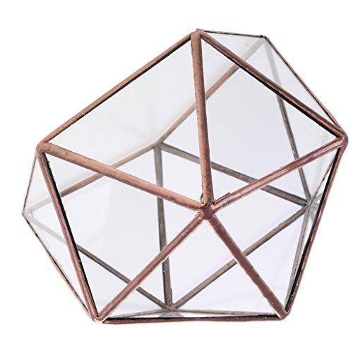 D DOLITY Klare Geometrische Glas Terrarium Schmuckschatulle Gewächshaus Pflanzgefäß Kerzenhalter - 12 x 12 x 12cm Kupfer
