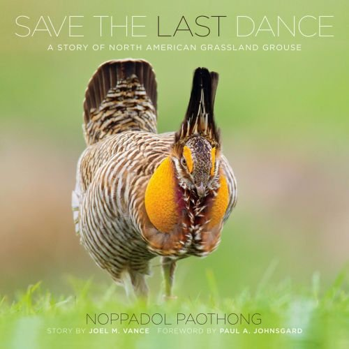 Compare Textbook Prices for Noppadol Paothong Photography NPP617480 Save the Last Dance  ISBN 9780615617480 by Noppadol Paothong,Paul A. Johnsgard,Noppadol Paothong,Noppadol Paothong