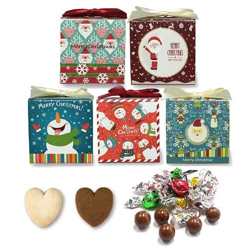 クリスマス プチギフト お菓子 子ども『ワクワク クリスマス クッキー&チョコ詰め合わせ』結婚式 業務用 ギフト 個包装(10個セット)●他数量割引セットあり