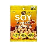 大塚食品 しぜん食感 SOY キャラメルカリカリ大豆 21g×6個