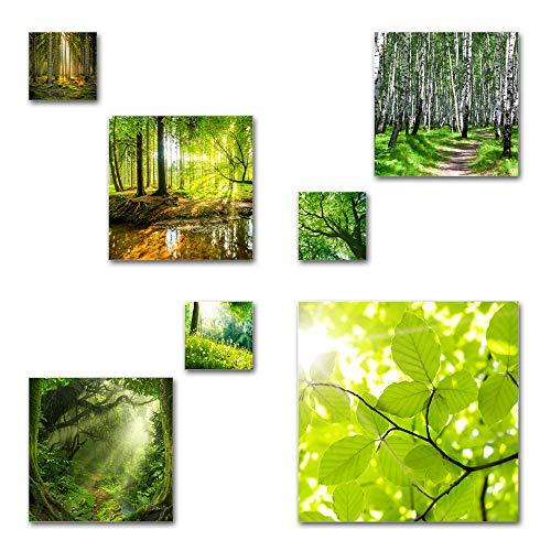 Wald und Bäume Bilder Set, 7-teiliges Bilder-Set, Moderne seidenmatte Optik auf Forex, frei positionierbare schwebende Anbringung, UV-stabil, wasserfest, Kunstdruck für Büro, Wohnzimmer, Deko Bilder