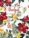 Budget 101: Monthly Budget Tracking with Guide with List of Income , Monthly - Weekly Expenses and Bill Payment Tracker | Red Valentine Floral Design (Budget Spreadsheet)