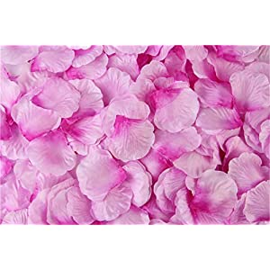 HJQ's store 1000 Pieces Light with Dark Lilac Silk Rose Petals Artificial Flower Petals for Wedding and The Any Other Ocasions