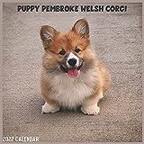 Pembroke Welsh Corgi Puppy 2022 Calendar: Official Corgi Dog Breed Calendar 2022, 16 Months
