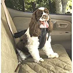 Solvit-Car Safety Harnesses For Dogs