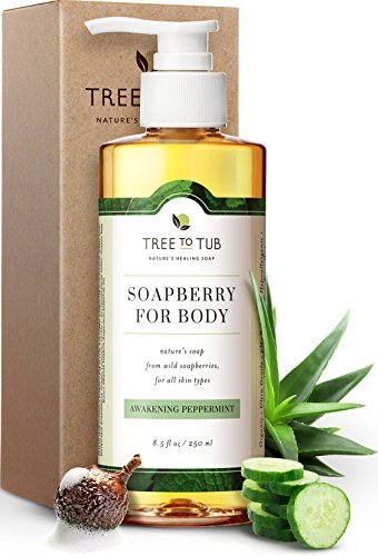 Clarifying Peppermint Body Wash by Tree to Tub | The Only pH 5.5 Balanced...