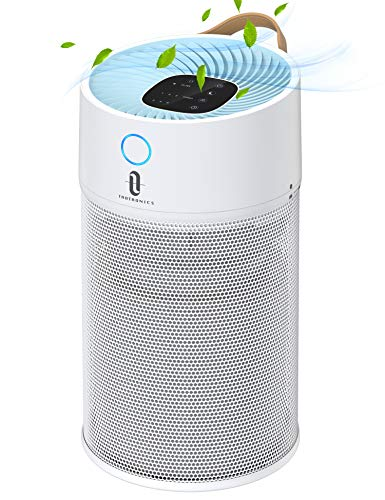 Air Purifier for...