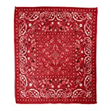 Golee Throw Blanket Colorful Pattern Red Paisley Bandanna Black White Geometrical 60x80 Inches Warm Fuzzy Soft Blanket for Bed Sofa