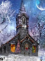 油絵数字キットによる絵画デジタル絵画油絵 数字キットによる絵画手塗りDIY絵デジタル油絵塗り絵 - 城の雪景色
