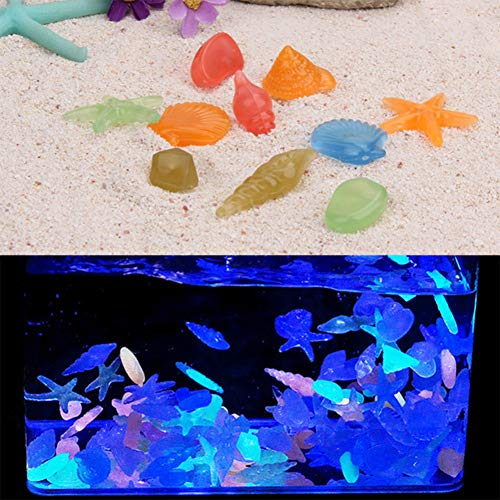 ETbotu Aquarium Sieraden, Vis Tank Accessoires, Aquarium Decoratie - Kleurrijke Lichtgevende Zeester Conch Schelp Gevormde Gloeiende Stenen voor Aquariumvissen Tank Zwembad Landschap Decoratie