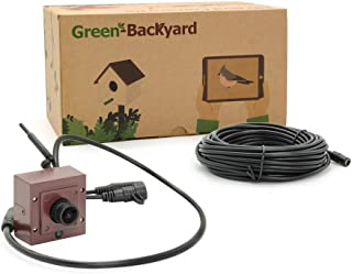 GOLBONG Green-Backyard WiFi Bird Box Camera Free App for Mobile Phone Tablet 2.8mm Adjustable Lens Night Vision