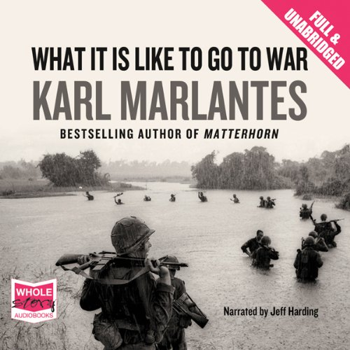 What It Is Like To Go To War audiobook cover art
