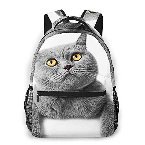 Laptop Rucksack Schulrucksack Kätzchen Katzen Fahne britisch, 14 Zoll Reise Daypack Wasserdicht für Arbeit Business Schule Männer Frauen