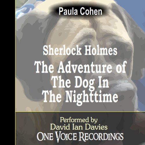 Sherlock Holmes and the Dog in the Nighttime audiobook cover art