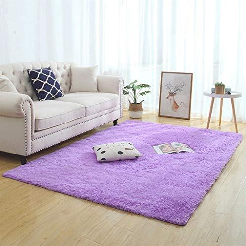 Silky Fluffy Carpet Moderno Hogar Decoración Larga Peluche Shaggy Alfombra Play Mats Sofá Sofá Living Dormitorio Cama Mat Balcón Alfombras (Color : F, Size : 200x200cm)